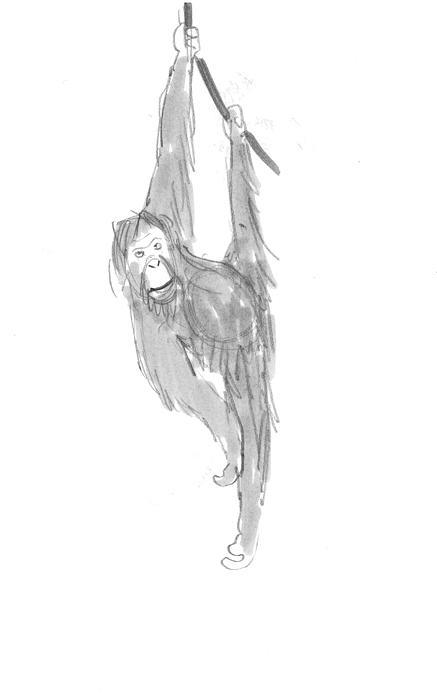 sketch_