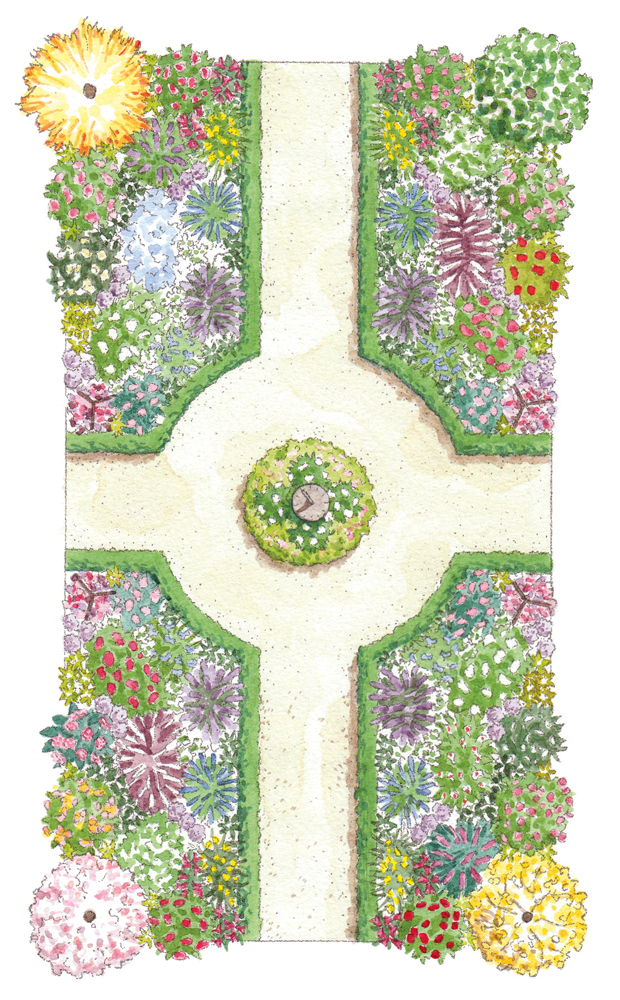 Mixed Border Garden Illustration_2