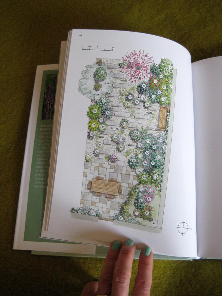 Scented gardens photo 2_
