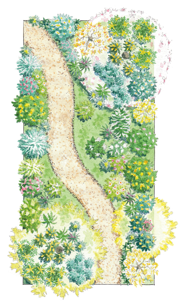 Shady Garden Illustration_2